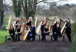 Irish Harp Orchestra 2014