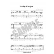 Barney Brallaghan - Slip jig
