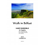 Walk in Belfast Ensemble - Directors' Score