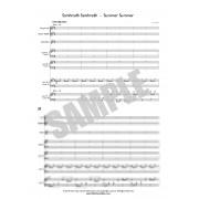 Samhradh, Samhradh - Summer, Summer - Directors