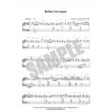 The Belfast Hornpipe - Solo