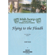 Flying to the Fleadh