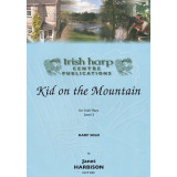 Kid on the Mountain